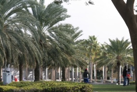 Public Parks in Dubai